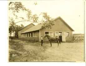 Avondale stable