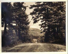 Stone Mountain Road