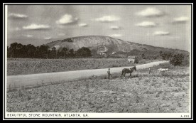 Stone Mountain Farming Postcard