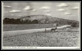 Stone Mountain Farming Postcard