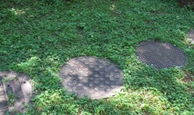 Sewer and manhole covers serve as garden pavers (Samantha Mooney)